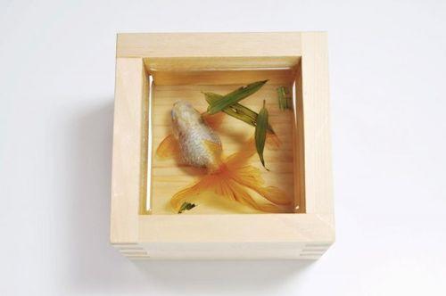 Riusuke-Fukahori-Goldfish-Salvation-5