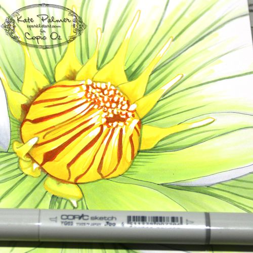 Copic Flower 16a wm