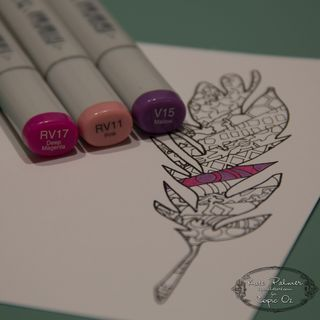 Copic Doodled Feather Card-6
