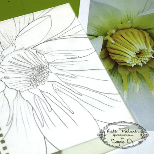 Copic Flower 1a wm