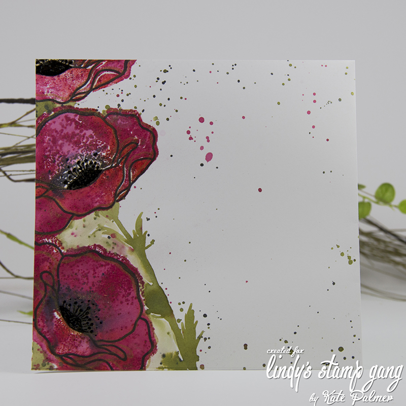 LSG - Poppies-3a sm